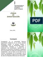 Lineas+Inv.+Unefa