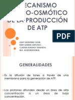 MECANISMO QUIMIO-OSMÓTICO DE LA PRODUCCIÓN DE ATP