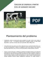 Proyecto Carlitos Estiercol Imp