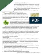Alga Sebagai Sumber Biofuel