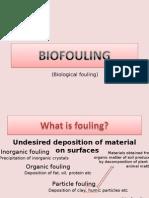 Bio Fouling