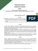 Regolamento Interno Gestione 2013 2