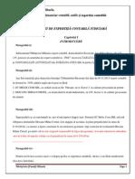 Raport de Expertiza Judiciara Patrascioiu