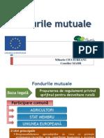 Fonduri-mutuale (1)