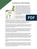 A leguminosa Gliricídia.docx