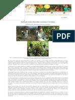 Adubação verde, alternativa econômica e ecológica.pdf