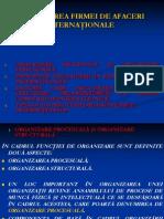 Curs 5 - Modalitati de Organizare a Fimelor Internationale