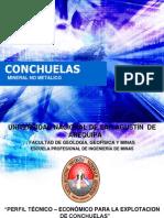 CONCHUELAS_EXPOSICION