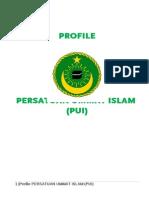 Profile PUI Fix