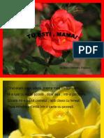 Trandafiri.ppt
