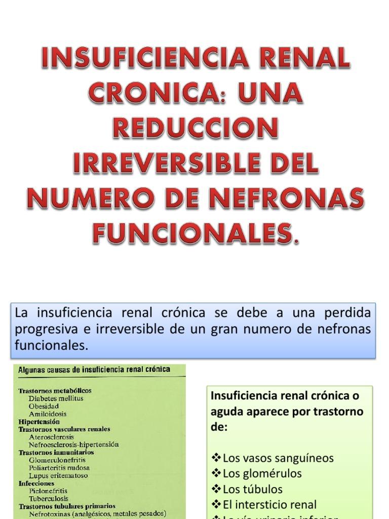 Insuficiencia Renal Cronica Lucho