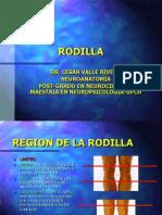 03 - Rodilla y Pierna