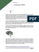 4-Semana - Lectura Para La Clase El Equipo Del Cerebro