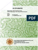 Evolusi Stomata