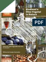 Biodiesel e óleo vegetal in natura - Cópia