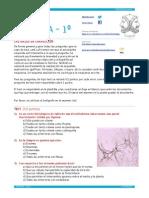 EX BOT 2014 ENE 1 BACH MOD 1 .pages.pdf
