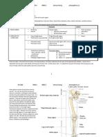 Anatomy 1106 Mod 2 Week 1 CMCC