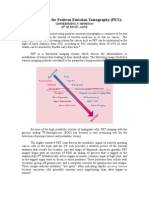 Nano Platform for Positron Emission Tomography