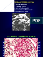 Clase Todas Las Glomereulonefritis 2013