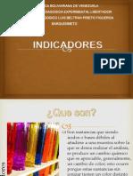 presentacionindicadores-130224151449-phpapp01