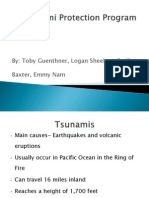 tsunami protection program