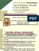 1.-Verano 2010 Sexualidad Sistema Sex. Masc. Fem