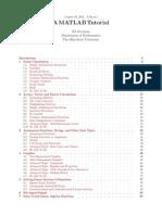 MATLAB Tutorial Document