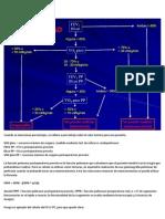 Operabilidad en Cancer de Pulmon