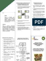 triptico_requisitos_2012