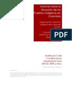 Informe Audiencia Corte Constitucional (1)