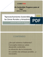 Presentacion Del Sr. Gustavo Suarez de Freitas