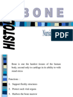 Bone (Nursiah)