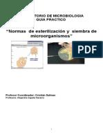 Guia Practico Micro UV