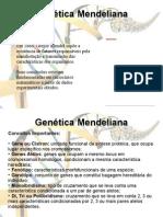 Aula Genética Mendeliana (Monoibridismo, Diibridismo e Poliibridismo)1