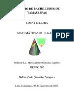 Trabajo Matematicas Milton