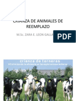 Crianza de Animales de Reemplazo 2012