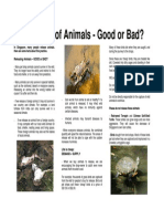 Releasing of Animals - Good or Bad?