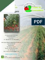 838afd Brochure
