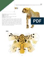 Cheetah e a4