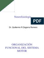 2.1- Neurofisiología Aplicada a las Ciencias del Deporte. Dr. Guillermo Zegarra