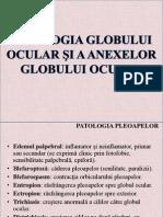 Patologia Globului Ocular Si Anexe.ppt.Conv (1)