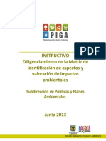 Instructivo Matriz Eia