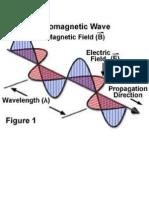 Wave EGM