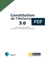 igipartners-constitution-3.0.pdf