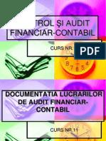 CTRL Curs11