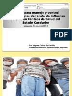 Pautas Ah1n1 Insalud Carabobo 2013 1