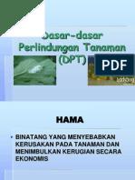 3 Bntgpenyebab Hama Rev