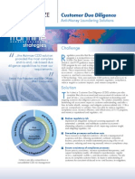 fs nice actimize brochure - customer due diligence solution