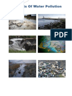 Water Pollution Report