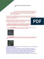Dixon, Dougal - Enciclopedia De Dinosaurios Y Animales Prehistoricos.pdf